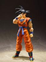 SHFiguarts-Dragon-Ball-Z-Goku-Official-Photos-02